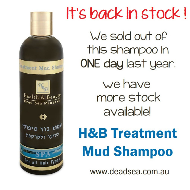 H&B Treatment Mud Shampoo